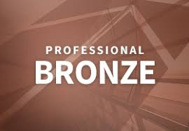 Professional Level Resume Writing Services   Bronze Package Other Professional Packages