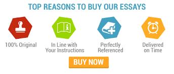Buy Essays Online Metricer com