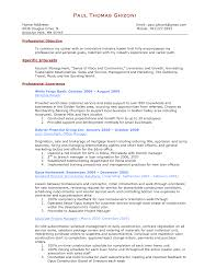 Director Of It Resume Examples by Resume Sample Cv Of Sales Executive Eeg And Ms Coverletter For
