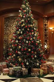 best 25 best christmas tree ideas on pinterest spiral christmas