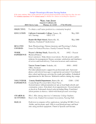 Example Resume Pdf  resume sample business analyst  plan outline