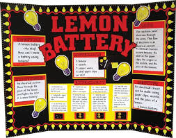Image result for science fair board examples