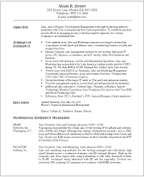 Resume Examples  Example Of Job Resume For Sales Business Objective With Summary Of Experience And