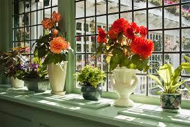 ways to maximize your windowsill space jeld wen blog jeld wen blog