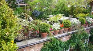 Rooftop Garden Ideas 19 Best Urban Farming Images On Pinterest Urban Farming Rooftop