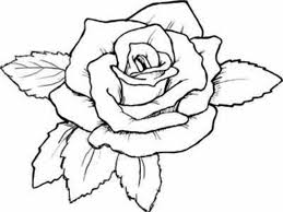 roses coloring page virtren com