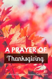 what is thanksgiving prayer a prayer of thanksgiving u0026 gratitude