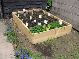 100 raised vegetable garden how to make a raised bed how