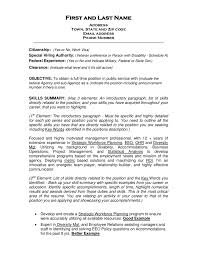 Retail Professional Summary Resume Objective Examples How To Write A Objectives For Retail