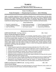 Example Job Resume by Ux Director Resume Best Free Resume Collection