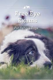 philadelphia firefighter exam study guide booklet best 25 free eye exam ideas on pinterest eye exam prices eye