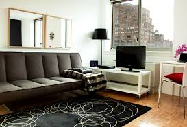 Living Room Furniture Design Apartment  New York City NY NEW - New apartment design