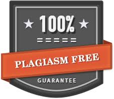 custom essay writing help alargamientodelpene   com