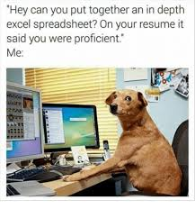 Dank Meme  Hey Can You Put Together an in Depth Excel Spreadsheet