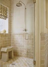 Bathroom Shower Design by Small Bathroom Shower Ideas 3684