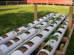 Nice Backyard Aquaponics System Design Home Design - Backyard aquaponics system design