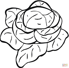 lettuce coloring pages free coloring pages
