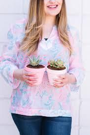 Succulents Pots For Sale by Diy Ombre Painted Pots Best Soil For Succulents Best Friends