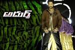 Wallpapers Backgrounds - Nandamuri Taraka Rama Rao born 1983 more popularly known NTR (adurs wallpaper Nandamuri Taraka Rama Rao born 1983 more popularly known NTR dvsk wordpress 1280x854)