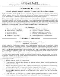 Research Analyst Sample Resume by Resume Summary Of Customer Service Skills Emt Skills Resume