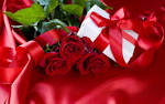 Wallpapers Backgrounds - Romantic Valentine Day Rose Picture wallpaper (romantic valentine day rose picture wallpaper holiday mi9 1440x900)