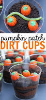 1st Birthday Decoration Ideas At Home 120 Best Pumpkin Patch Birthday Party Images On Pinterest