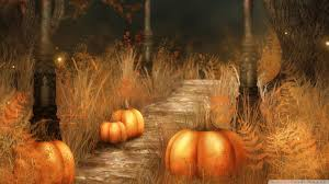 halloween pumpkin wallpapers cute fall pumpkins wallpaper pumpkins halloween wallpaper free