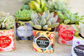 Succulents Pots For Sale by Vintage Tea Tin Succulents U2013 Sisoo