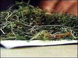 BBCBrasil.com | Reporter BBC | Fumaça de maconha é mais tóxica ...