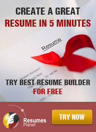CVMonsters  professional resume writing service