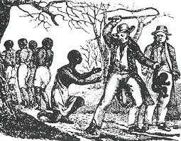 Misión Rango D & C; ¡Consiguiendo esclavos para el sacrificio! Images?q=tbn:ANd9GcRNrsVO3ynOdf3pgSXkS7GNJCQbBLezecUhiXy3hdL-H0293cJv