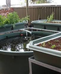 Best Aquaponics Images On Pinterest Hydroponic Gardening - Backyard aquaponics system design