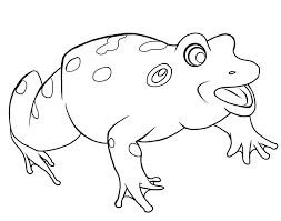tadpole coloring page free frog coloring pages to print out and color