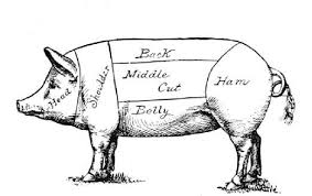 sketched image of pig to be slaughtered, borrowed from /t1.gstatic.com
