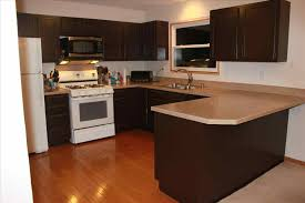 Antique Painted Kitchen Cabinets Painted Kitchen Cabinets With Black Appliances Best Home Decor