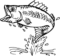 bass fish outline 18252 free coloring pages