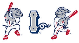 lehigh valley iron pigs