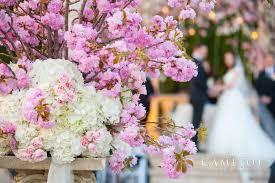 amaryllis event decor flowers northvale nj weddingwire