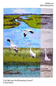19 best whooping cranes images on pinterest crane animals and