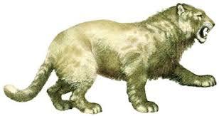 Leão-das-cavernas