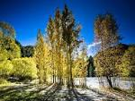 Arrowtown Autumn New Zealand