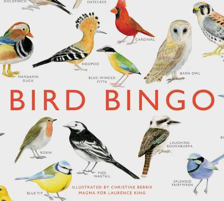 Image result for bird bingo