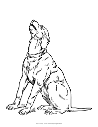 printable 30 realistic dog coloring pages 4626 realistic dog