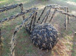 halloween giant gnarly hairy spider halloween pinterest