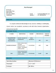 basic resume    x     basic resume template lorexddns