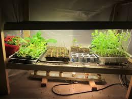 download growing vegetables indoors with lights solidaria garden