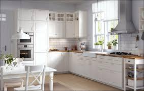 Ikea Free Standing Kitchen Cabinets by Kitchen Under Sink Organizer Ikea Ikea Portable Kitchen Kitchen