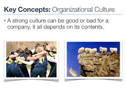 Dissertation organizational culture FC