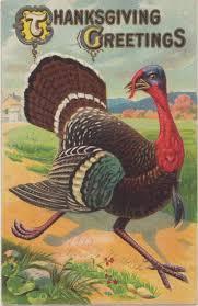 thanksgiving kid poems nothing but limericks
