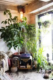 29 best for the garden images on pinterest plants gardening